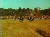 ЛОШАДИНАЯ СИЛА / 2006 г. / Лошадиные гонки, скаковые лошади и коннозаводство / Специальный корреспондент